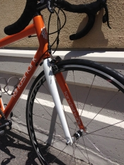 Land shark Carbon Road Enve Fork