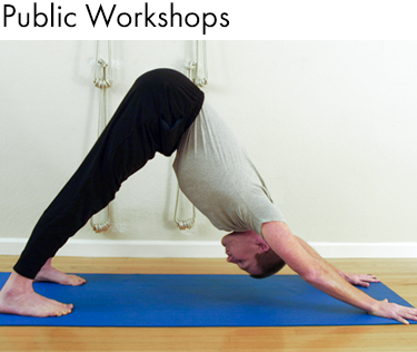 Whole Athlete Public Yoga Workshops